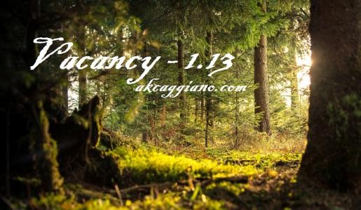vacancy1.13