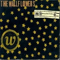 wallflowersbringingdownthehorse